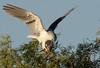 WTK CLU__MG_8267_2011-12-08-19-41-03-2 (2)