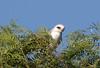 WTK CLU__MG_8380_2011-12-08-20-53-59-2 (2)