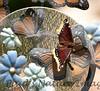MournClk BkYrd_7I2B5904_2011-0-1429080573-O