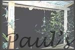 bats verandah2-1100685499-O