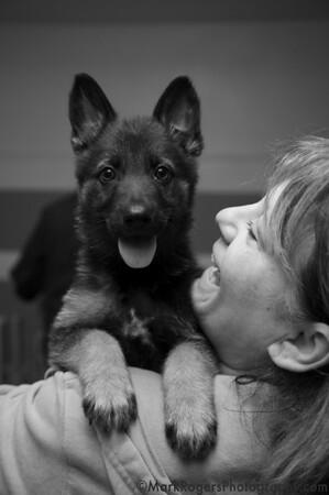Cucku & Corinne<br /> German Shepherd Mix