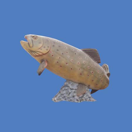 German Brown Trout, 19'L  #7142