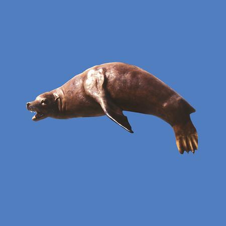 Seal Wall Mount, 5'L  #7132