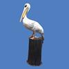 Pelican #7114