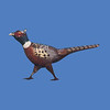 Pheasant, 11'L  #7071
