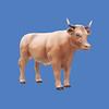 Oxen #7099