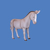 Donkey #7147