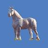 Percheron #7187<br /> Draft Horse #7015<br /> Shire Horse #7016
