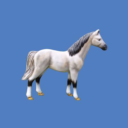 Pony #7008