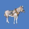 Mule #7197