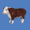 Hereford, 3/4 size  #7210