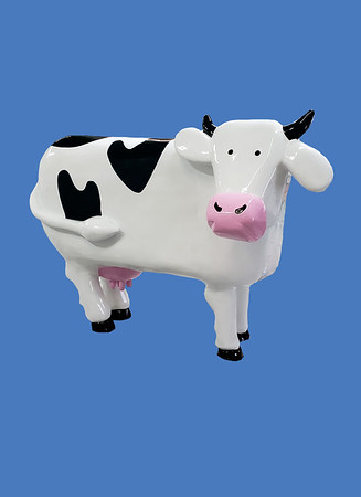 Cow, caricature #7313