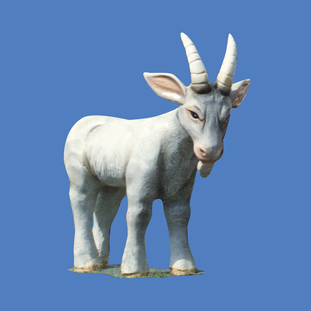 Billy Goat #7226