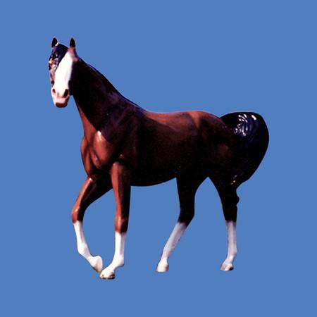 Arabian Horse #7011