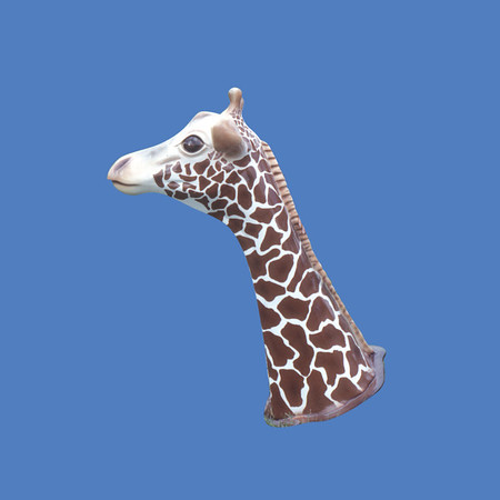 Giraffe Head #7049