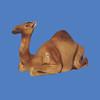 Camel, life size  #7041