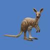 Kangaroo, 5'H  #7052