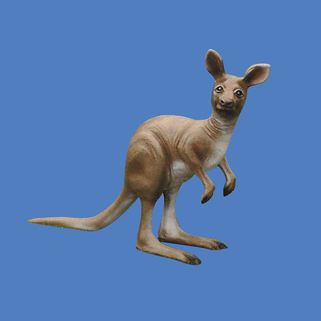 Kangaroo, 3'H  #7051