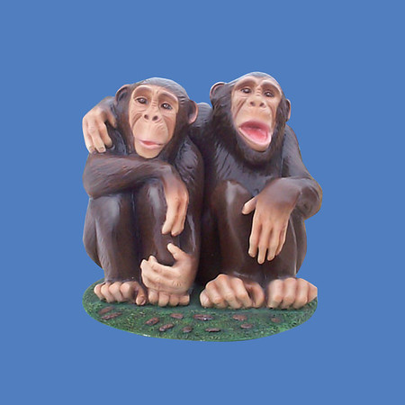 Chimpanzees #7201