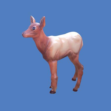 Elk Calf, life size #7193