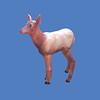 Elk Calf #7193