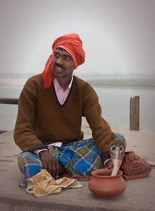 snake charmer cobra, India