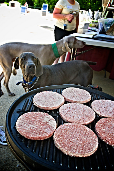 Bo Checking out the burgers