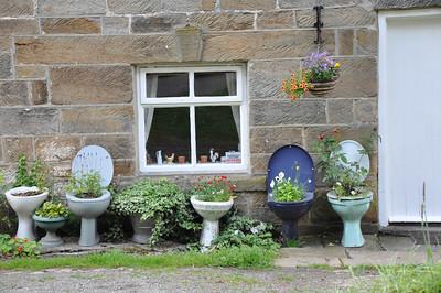 loo garden.jpg