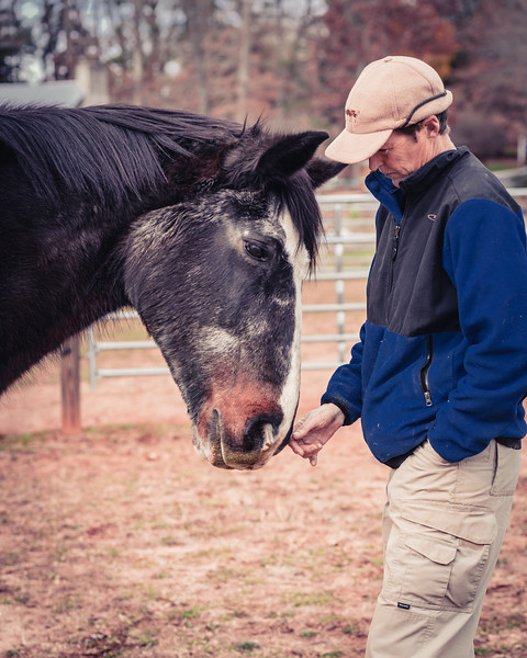 These two have been together since Bucky was born, 31 years ago.  This is the kind of relationship I love to see between horse and human.  I've never had a horse of my own, and have also never understood the ability to buy and sell horses, as I couldn't imagine doing that with my dogs and cats.  Certainly there are occasions when it is necessary, however I appreciate knowing someone who has horses in her life til death do them part.  It was hard for my friend to ask for this photo shoot as it felt to her as if it signaled the nearing end, and she did not want to lose Bucky without having photos to remember him by...  This kind of photo shoot also means so much to me.