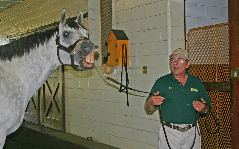 Tony Battaglia, a stallion master at Clairborne Farm in Kentucky, with a friend.