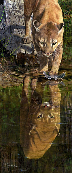 """Reflections"" (colored pencil) by Gemma Gylling"