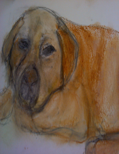 """Muffin"" (painting with watercolor) by Barbara Cohen"