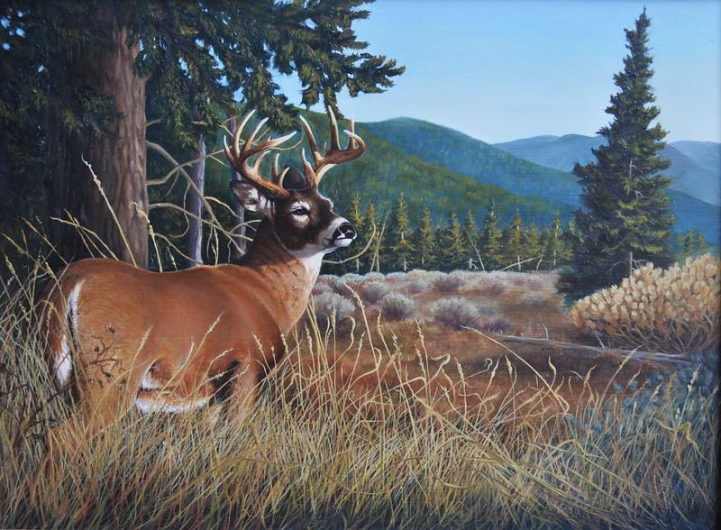 """Morning Buck"" (oil) by Bill Langis"
