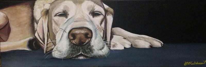 """""""Snoozing Lab"""" (acrylic on canvas) by Jennifer McCutcheon"""