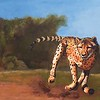 """Turbo Cat"" (acrylic) by Lanny Sherwin"