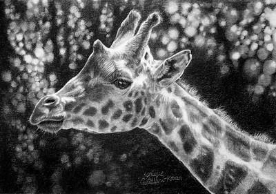 """Giraffe Portrait"" (graphite) by Monique Castellani-Kraan"