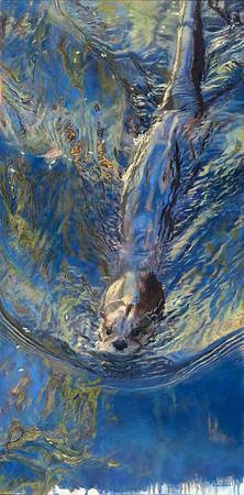 """""""Wet n' Wild"""" (oil) by Kelly Singleton"""