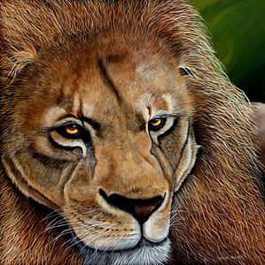 """Pride"" (acrylic on canvas) by Sheryl Hughes"