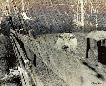 """Regarding Loneliness"" (digital photo collage) by Matthew Johnson"