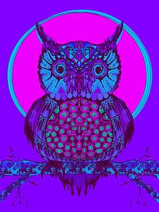 """""""Midnight Owl"""" (digital art) by November Hart"""