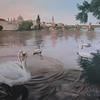 """The Swans"" (oil on canvas) by Olga Kozulenko"