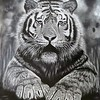 """""""The Last of His Kind"""" (pencil) by Colleen Freshour"""
