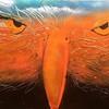 """""""Rough Sky"""" (spray, mixed media) by Soumya Jayaraman"""