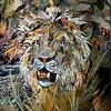 """Lion"" (collage) Bob Craig"