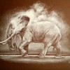 """Untitled (Elephant)"" (white charcoal on drawing board) by Amy Albright"