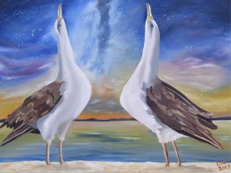 """""""Laysan Waltz"""" (oil on canvas) by Chloe Waterfield"""