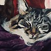 """Little Tiger"" (acrylic) by Daniella Smith"