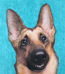 """Sadie"" (pastels) by Maywah Hill"