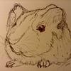 """Guinea Pig"" (marker) by Nicole Porter"