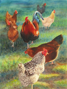 """Lucy's Flock"" (watercolor) by Elizabeth Burin"